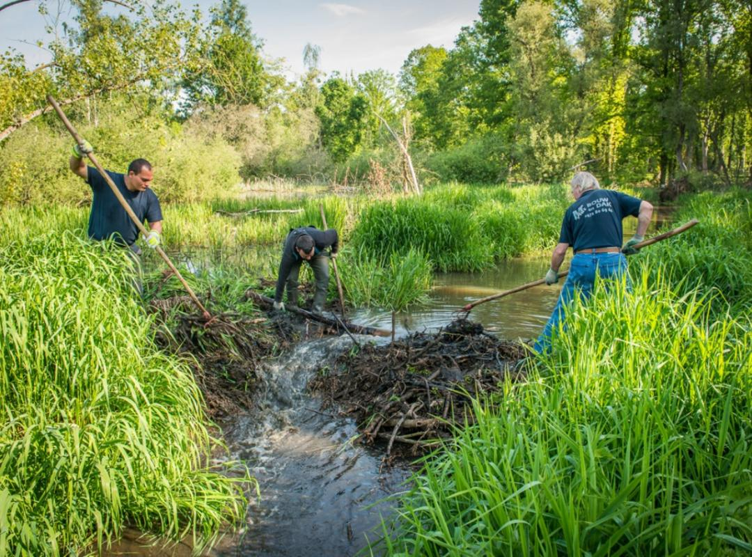 Werken waterloop behoud beverdam Bart Nevens