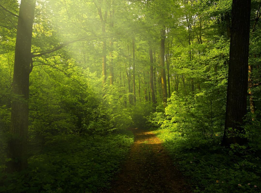 Bart Nevens start gesprekken Nationaal Park Vlaams-Brabant